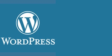 WordPress 10th Anniversay